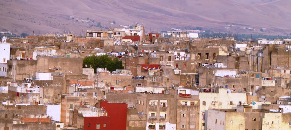 cropped-Morocco-2013-Sylvia-2.jpg